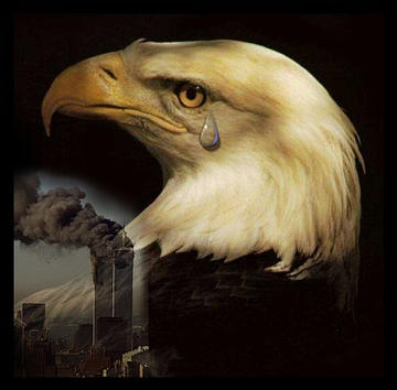 Eagle Crying Photo http://noidly1.com/Page2.html